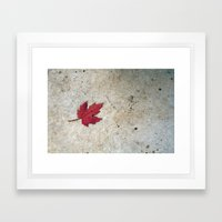 Red Leaf on Concrete Framed Art Print