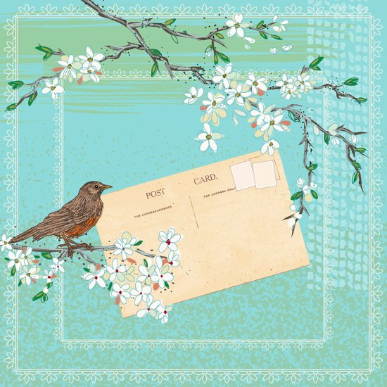 Sketchy Illustration  - Robin And Cherry Blossoms In Spring Canvas Print