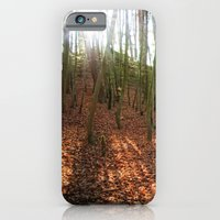 Autumn Sun And Shadows iPhone 6 Slim Case