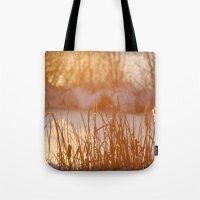 Winter Swamp Sun Rays Tote Bag