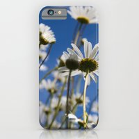 iPhone Cases featuring summer V by petra zehner