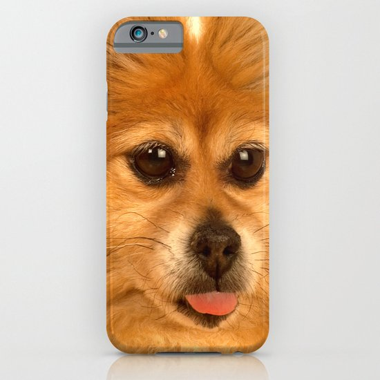 Pomeranian dog (slightly distorted like her personality) lol iPhone & iPod Case