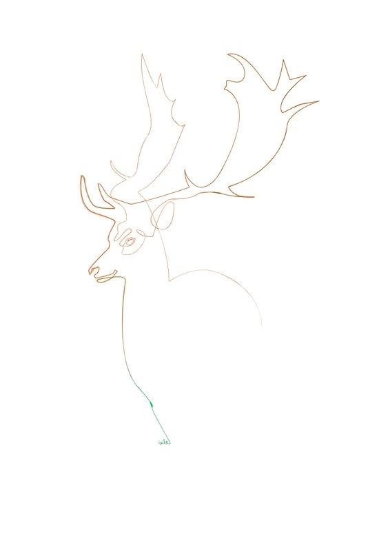 Deer Line Canvas Print