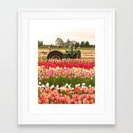 Deere In The Field Framed Art Print