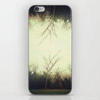 Green trees.  iPhone & iPod Skin