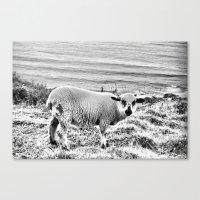 Snowy Lamb Canvas Print