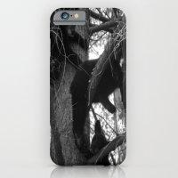 Berry Beary iPhone 6 Slim Case