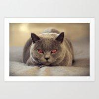 Superstar Diesel The Cat… Art Print