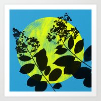 myrtle 2 Art Print
