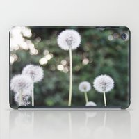 Dandelions iPad Case