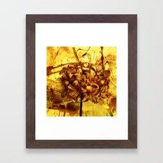 golden flower Framed Art Print