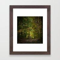 Autumn Impressions (II) Framed Art Print