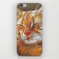 Sleeping Ginger Kitten C… iPhone & iPod Skin