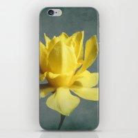 Sweet Sue iPhone & iPod Skin