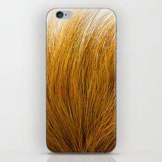 Orange Fuzz iPhone & iPod Skin