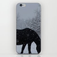 Snow Horse iPhone & iPod Skin