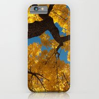 iPhone & iPod Case featuring latter hour by Max Rubenacker