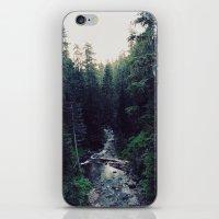 Oregon x Rainier Creek iPhone & iPod Skin