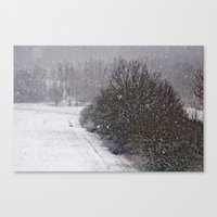 Snow Is Falling Canvas Print