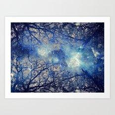 Winter Wood Art Print