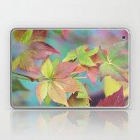 Colorful Fall Laptop & iPad Skin