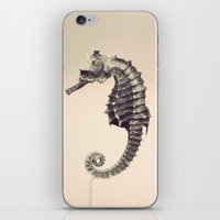 Water Pony iPhone & iPod Skin
