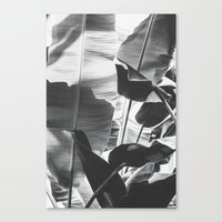 Black and White Banana Leaf Canvas Print