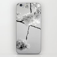 Cherry Blossoms in Black and White iPhone & iPod Skin