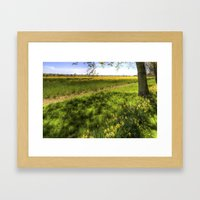 Daffodil Meadow Framed Art Print