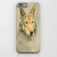 Wolf portrait iPhone 6 Slim Case