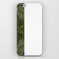 Coconut Leaf collage 2 iPhone & iPod Skin