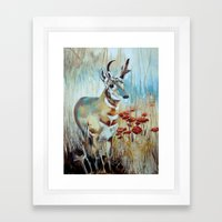 Antelope Framed Art Print