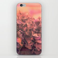 Geo nature iPhone & iPod Skin