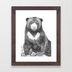Malayan Sun Bear (Beruang Madu) Framed Art Print
