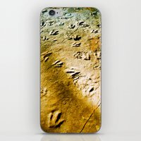 Eubrontes Giganteus iPhone & iPod Skin