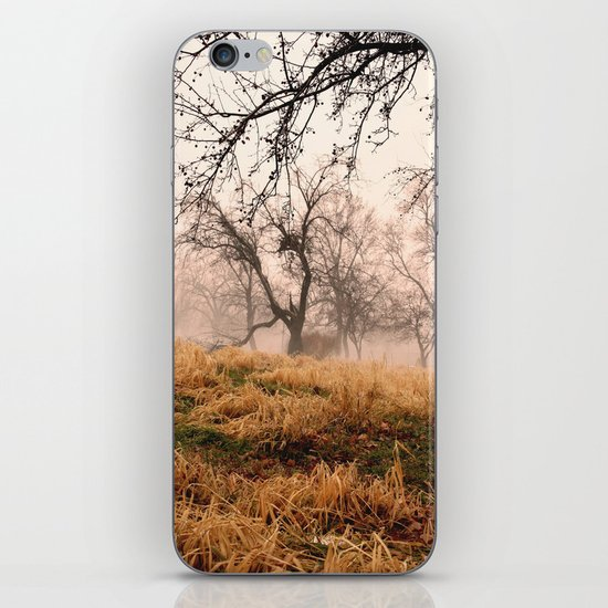 Natural Mystic in the Air iPhone & iPod Skin