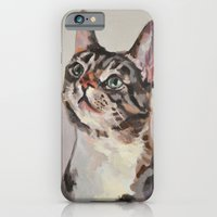 iPhone & iPod Case featuring Kitten / Cat by Jamie Gee