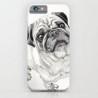 Seymour the Pug iPhone 6 Slim Case