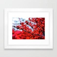Festive Berries 2 Framed Art Print