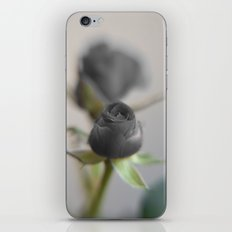 A Black Rose for your Sweetheart iPhone & iPod Skin