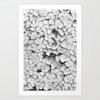Cracked Paint Art Print