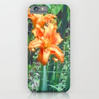 iPhone Cases featuring Tiger Lily Beauty by J&C Creations
