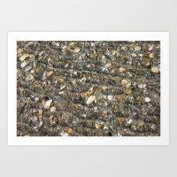 Shell Hunting Art Print