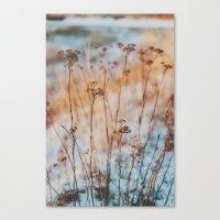 winterlight Canvas Print