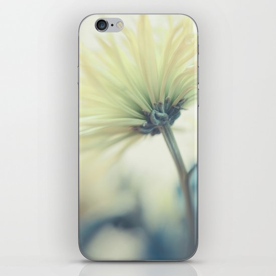 Lemon and Lime iPhone & iPod Skin