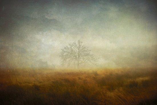 depth of sorrow Art Print