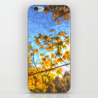 Autumn Arrives iPhone & iPod Skin