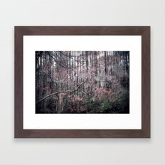 Blooms Like Lightning Framed Art Print