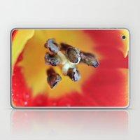 Tulip Rays Laptop & iPad Skin