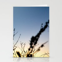 Sunset Contrast Stationery Cards